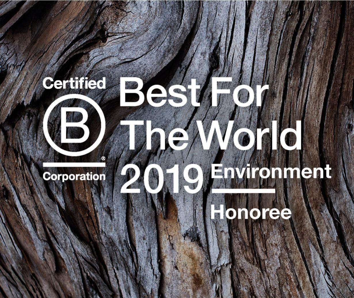 What does it mean to be a B Corp?